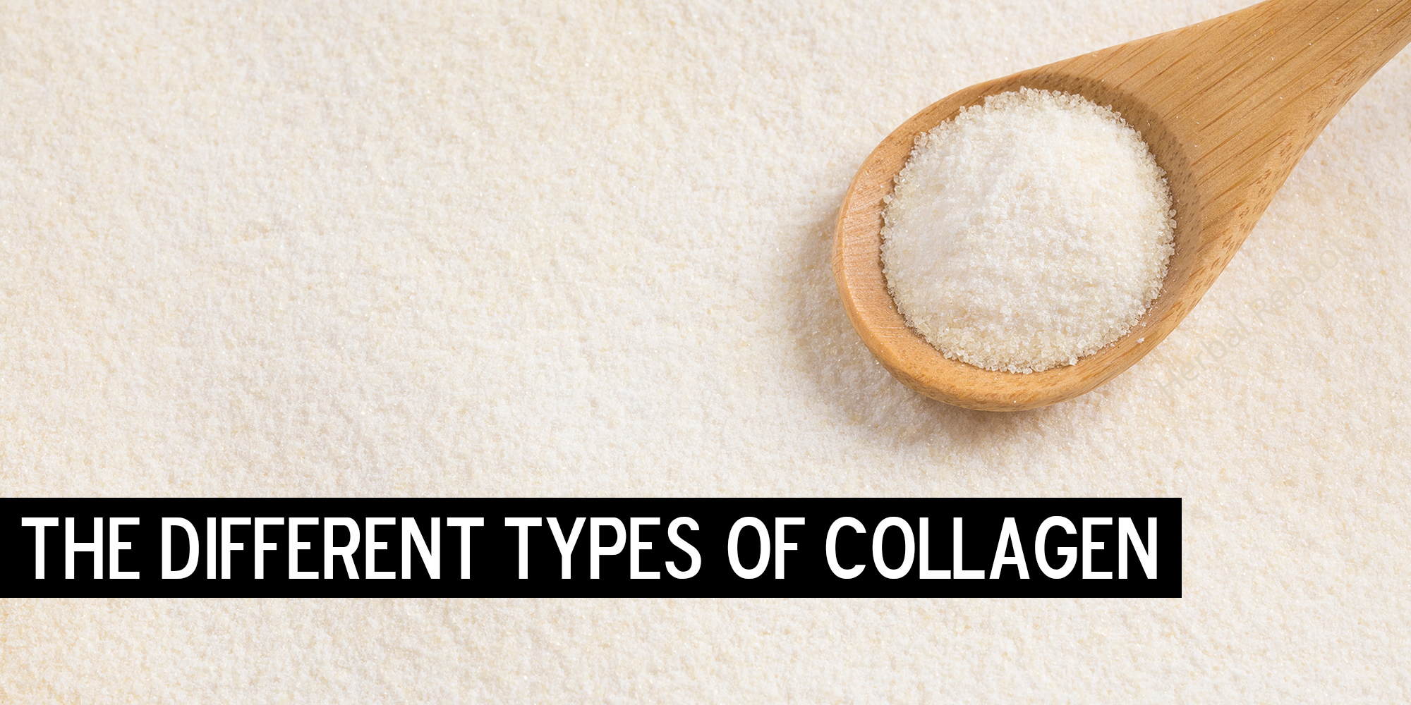 The Different Types of Collagen — and the Key Roles Each Plays